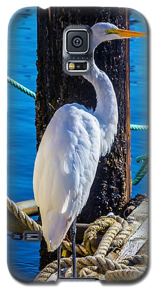 Great White Heron Galaxy S5 Case by Garry Gay