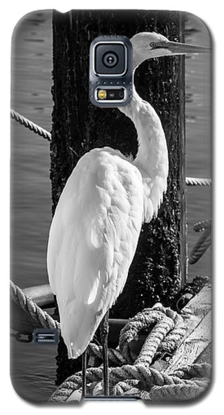 Great White Heron In Black And White Galaxy S5 Case
