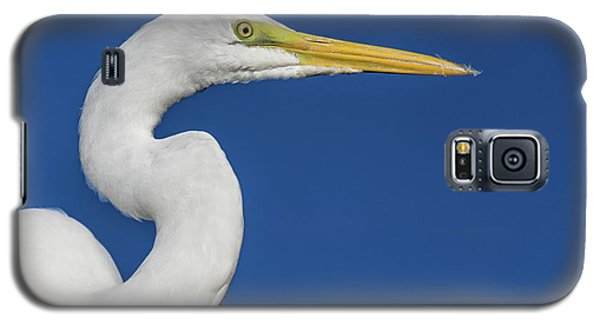 Great White Heron Galaxy S5 Case