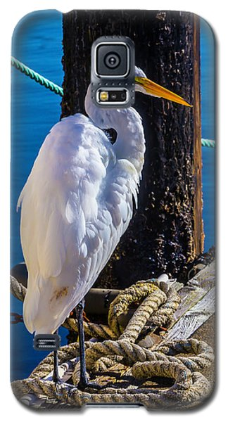 Great White Heron On Boat Dock Galaxy S5 Case
