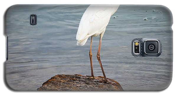 Great White Heron With Fish Galaxy S5 Case by Elena Elisseeva
