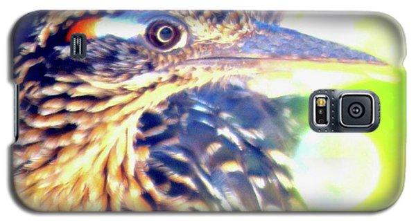 Greater Roadrunner Portrait 2 Galaxy S5 Case