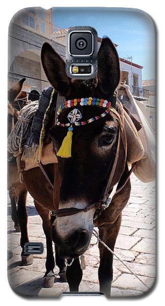 Galaxy S5 Case featuring the photograph Greek Donkey by Louise Fahy
