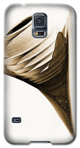 Greek Urn Galaxy S5 Case