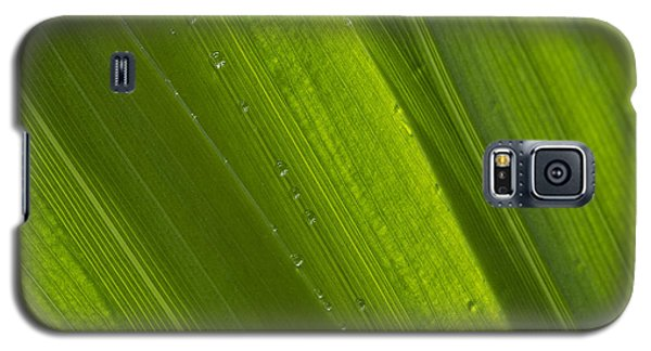 Green Abstract 2 Galaxy S5 Case