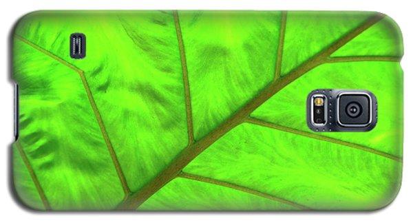 Green Abstract No. 5 Galaxy S5 Case