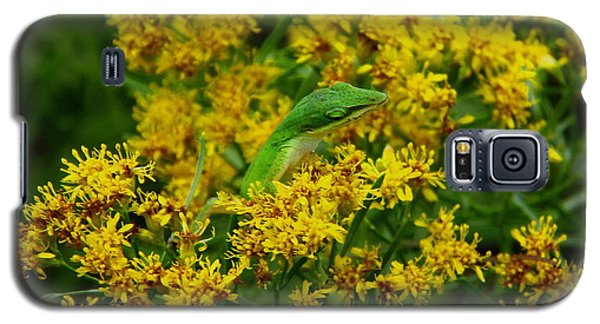 Green Anole Hiding In Golden Rod Galaxy S5 Case