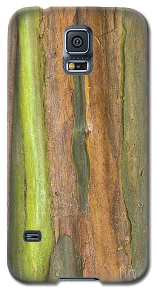 Galaxy S5 Case featuring the photograph Green Bark 3 by Werner Padarin