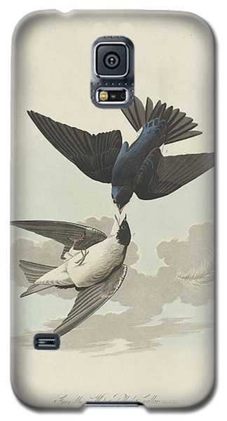 Green-blue Or White-bellied Swallow Galaxy S5 Case by Rob Dreyer