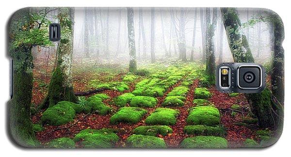 Green Brick Road Galaxy S5 Case