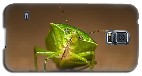 Green Bug Galaxy S5 Case