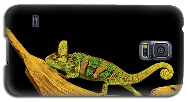 Green Chameleon Galaxy S5 Case