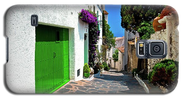Galaxy S5 Case featuring the photograph Green Door Passage  by Harry Spitz