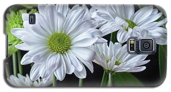 Galaxy S5 Case featuring the photograph Green Eyed Daisy by Bonnie Willis