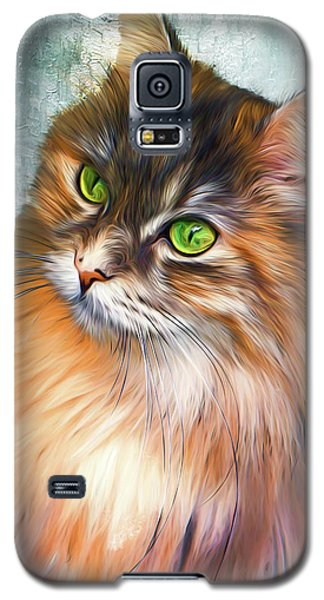 Green-eyed Maine Coon Cat - Remastered Galaxy S5 Case
