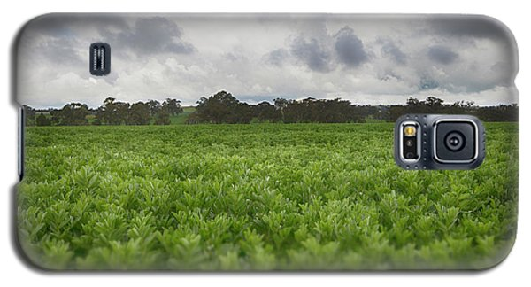 Galaxy S5 Case featuring the photograph Green Fields 4 by Douglas Barnard