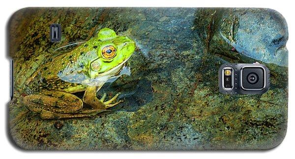 Green Frog Galaxy S5 Case