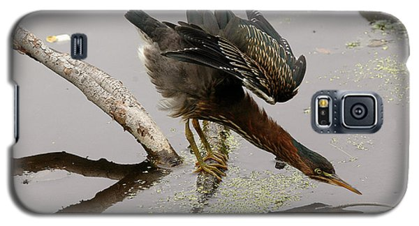 Green Heron Galaxy S5 Case
