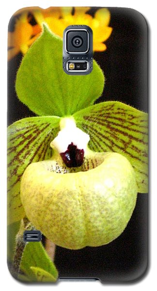 Galaxy S5 Case featuring the photograph Green Ladyslipper Orchid by Alfred Ng