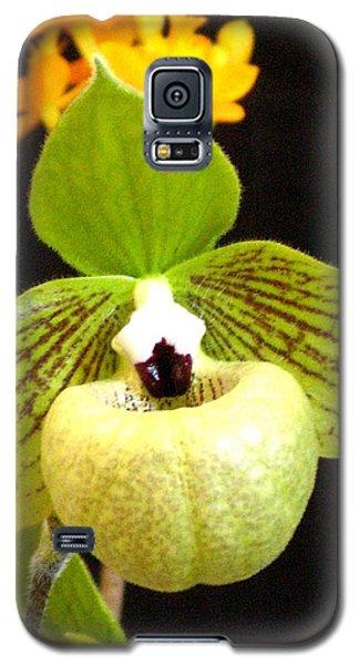 Green Ladyslipper Orchid Galaxy S5 Case