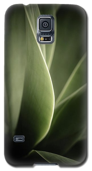 Galaxy S5 Case featuring the photograph Green Leaves Abstract by Marco Oliveira