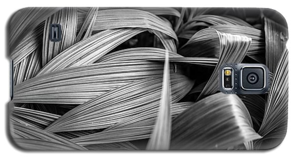 Galaxy S5 Case featuring the photograph Leaves Textured And Background by Jingjits Photography