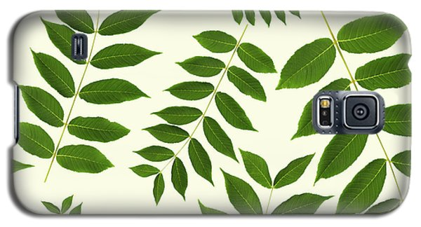 Galaxy S5 Case featuring the mixed media Botanical Pattern by Christina Rollo