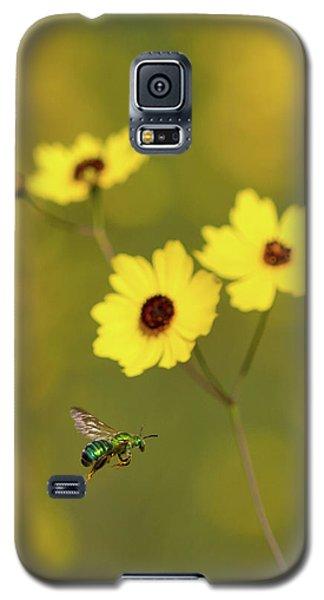 Green Metallic Bee Galaxy S5 Case by Paul Rebmann