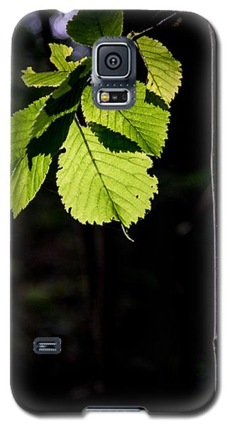 Galaxy S5 Case featuring the photograph Green by Odd Jeppesen