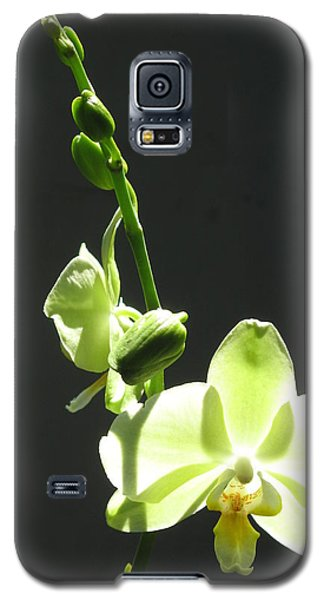 Green Orchids Galaxy S5 Case