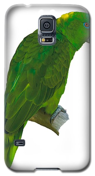 Green Parrot On White  Galaxy S5 Case