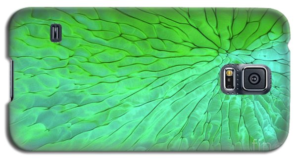 Green Pattern Under The Microscope Galaxy S5 Case