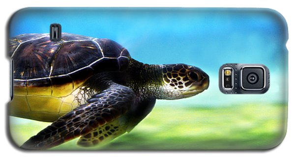 Green Sea Turtle 2 Galaxy S5 Case by Marilyn Hunt