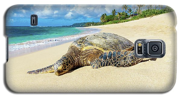 Green Sea Turtle Hawaii Galaxy S5 Case