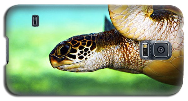 Green Sea Turtle Galaxy S5 Case by Marilyn Hunt