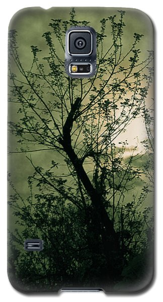 Green Sunset Galaxy S5 Case