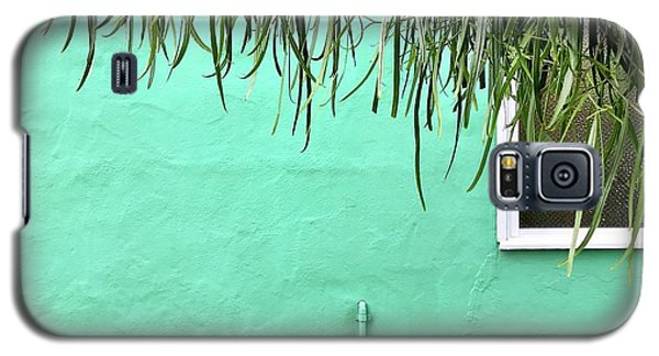 Green Wall With Leaves Galaxy S5 Case