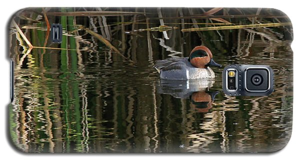 Green Winged Teal  Galaxy S5 Case