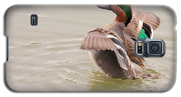 Galaxy S5 Case featuring the photograph Green-winged Teal by Ram Vasudev
