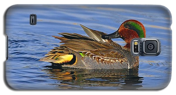 Green-winged Teal Galaxy S5 Case