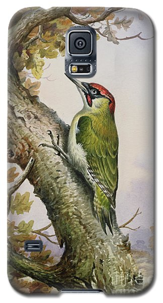 Green Woodpecker Galaxy S5 Case by Carl Donner