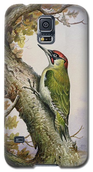 Green Woodpecker Galaxy S5 Case