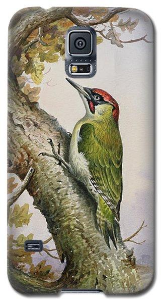 Green Woodpecker Galaxy S5 Case