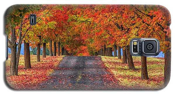 Greenbluff Autumn Galaxy S5 Case