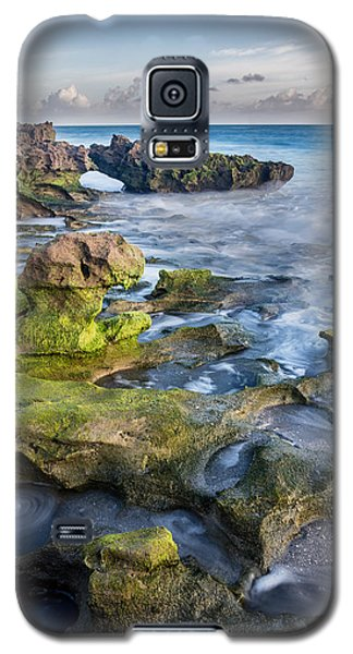 Greenery In Coral Cove Galaxy S5 Case
