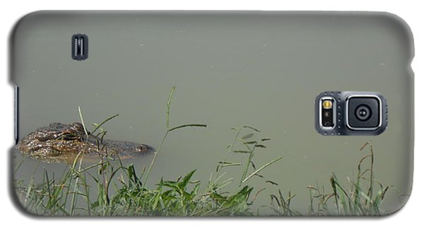 Galaxy S5 Case featuring the photograph Greenwood Gator Farm by Cynthia Powell