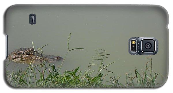 Greenwood Gator Farm Galaxy S5 Case by Cynthia Powell
