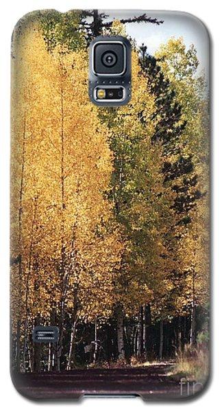 Galaxy S5 Case featuring the photograph Greer Arizona Aspen Trees by Juls Adams
