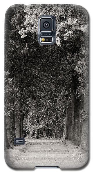Greeted By Trees Galaxy S5 Case