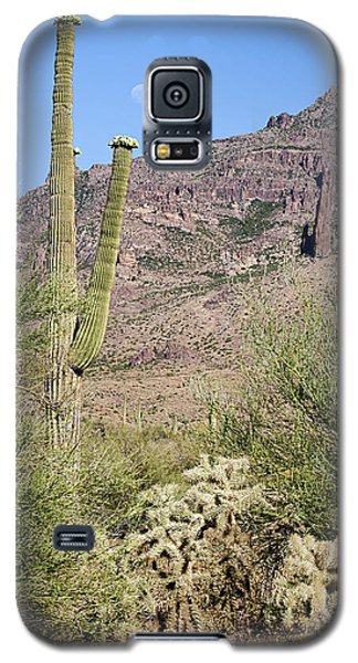 Galaxy S5 Case featuring the photograph Greeting The Night by Phyllis Denton